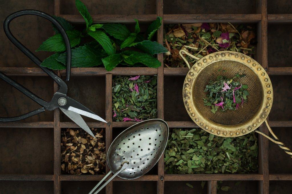 Verschiedene Teesorten aus Kräutern und Blüten Stephanie Jud Schweiz, Bern