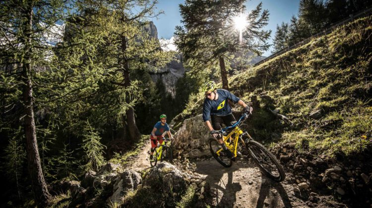 Alta Baida Mountain Biking
