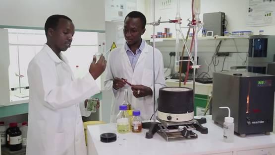 Im Labor - Malariabekämfpung