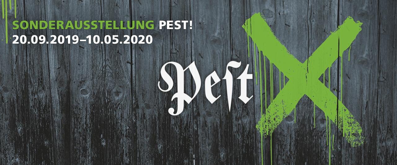 Die Geschichte der Pest und ihre globalen Auswirkungen